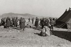 Turkish troops have participated in the Korean War gave the soldiers