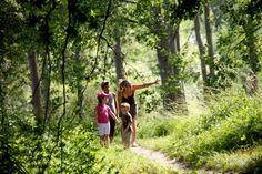 Chasse au trésor gratuite à télécharger PDF 🖨 Jeux à imprimer Forest School, France Europe, Activities For Kids, Safari, Couple Photos, Games, Outdoor, Juliette, Cycle 3