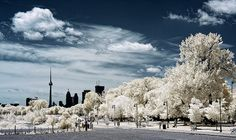 Oooh...this is just beautiful!  Who doesn't like snow?  Toronto.