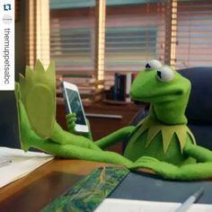 #Kermit #officetime
