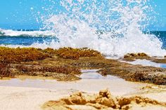 Tide Pools by Turtle Bay SEIS, via Flickr Turtle Bay Resort, North Shore Oahu, Tide Pools, Waves, Mountains, Nature, Outdoor, Outdoors, Naturaleza