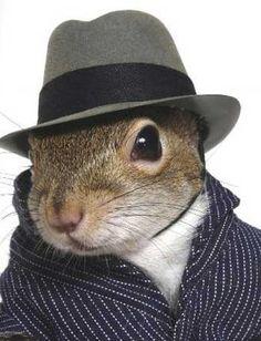 Sherlock Squirrel