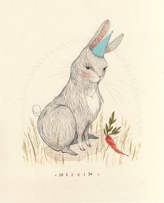 melvin. Illustrated by Rebecca Green