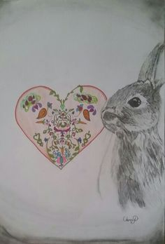 Draw Bunny by Artist Oana at only 13 years