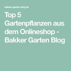 Top 5 Gartenpflanzen aus dem Onlineshop - Bakker Garten Blog