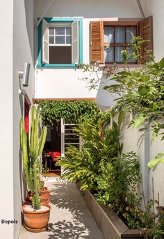 9 lovely backyards full of plants Minimal House Design, Modern Small House Design, Minimal Home, Homer Decor, Design Exterior, Narrow House, Home Building Design, House Goals, Beautiful Homes