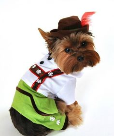 Beer Boy Halloween Dog Costume