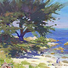 Cypress Shade.