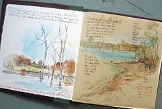 Sketching in Nature: Sketching is soothing...