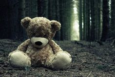 I just really love this picture of a teddy bear in the middle of the a forest road... lol