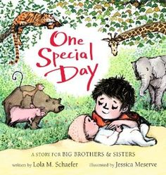 Amazon.com: One Special Day (A Story for Big Brothers and Sisters) (9781423137603): Lola M. Schaefer, Jessica Meserve: Books - just got this at library.  It's sweet!