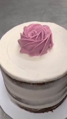 Cake decorating idea – Cakes and cake recipes Mini Cakes, Cupcake Cakes, Cupcake Frosting Recipes, Professional Cake Decorating, Cake Decorating Videos, Decorating Tips, Piping Icing, Rose Piping, Piping Tips