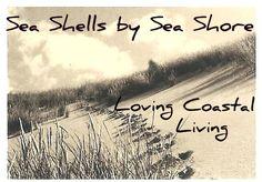 Loving Coastal Living by SeaShellsbySeaShore Cute Baby Turtles, Joy Of Living, Coastal Living, Sea Shells, Love, Beach, Nature, Sailors, Shots