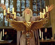 Albus Dumbledore-Head Master at Hogwarts School of Witchcraft and Wizardry
