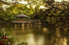 -Secret Heaven- - Tsurama Park / Nagoya - Japan