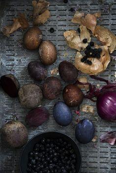 Färga ägg med rödlök, gullök, rödbetor och blåbär