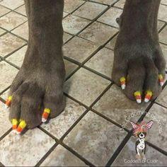 Candy Corn toenails