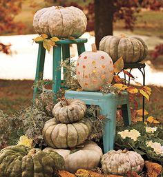 Lov the pumpkins on the colored stools... Not your same old Halloween colors...