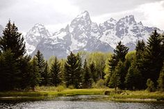 Honeymoon Travel in Grand Teton National Park and Jackson Hole, Wyoming Parc National, Grand Teton National Park, Great Places, Places To See, Beautiful Places, Most Visited National Parks, Jackson Hole Wyoming, Architecture, Places To Travel
