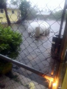 Posted September 2019 With Hurricane Dorian barely moving today after it left devastation across Freeport, Grand Bahama as well as other areas, a group of animal shelter volunteers are reported trapped at a local shelter. Animal Shelter Volunteer, Animal Shelters, September 2, Cattery, Volunteers, Humane Society, Small Dogs, Brave, Pup