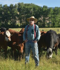 The ranchers of Country Natural Beef have voted to become Non-GMO Project Verified. CNB will be the first national brand of beef to be non-GMO verified.