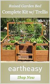I want to one day have a raised salad garden bed of everything I would eat in my yummy salad.  One day...