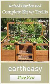 tips on garden design and tips on veggies to grow
