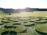 Chirton Bottom Wiltshire - Many intersecting arcs and laid circles forming a large number 8 overall