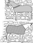 patterns for homemade horse items. Blankets, fly masks...