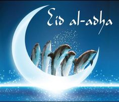 Eid ul Adha Mubarak Images 2018 - Eid Al Adha Pictures Images in 2018 sending wishes and greetings to Muslims on Eid Al Adha Pictures And this Eid ul Adha, the eid of sacrifice, sharing some eid ul Adha Mubarak pictures with you. Adha Mubarak, Eid Al Adha, Eid Mubarak Wallpaper, Happy Eid Mubarak, Mubarak Images, Pictures Images, Ali, Movie Posters, Moroccan Dress