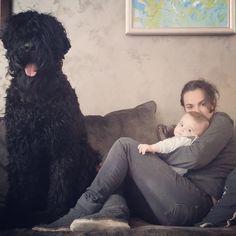 Kron 1 year old - family portrait '14 Black Russian Terrier
