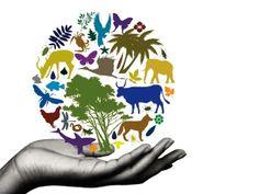 Biodiversity!