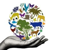 Biodiversity, for humans to live in harmony with nature.
