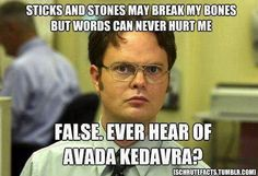 I don't know if I could love anything more than Dwight Schrute referencing Harry Potter :)