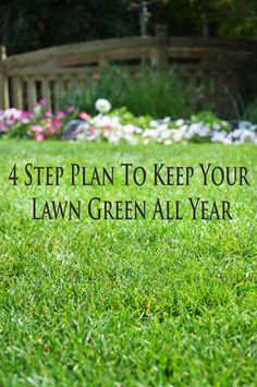 I've been really lucky to have a husband who really loves to take care of the yard. And in doing so we've really figured out how to keep the lawn really green, and soft. Fertilizing is so important and a key element to having good grass. Fertilizing should be done …