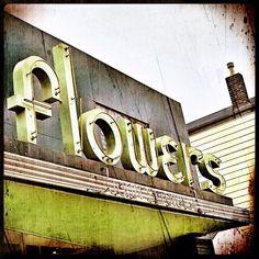 flower shop, Alameda, CA