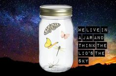 In A Jar by JayTheJedi.deviantart.com on @deviantART