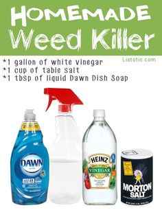 20 Insanely Clever Gardening Tips and Ideas (with pictures!)   Weed killer- Dawn, water, salt, vinegar
