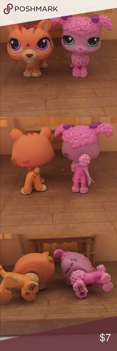 Lps cute tiger and pink dog. These Lps are not rare so it's going up for cheap. Even though they are not rare they are still cute and fun. They are also bobble head Lps. hasbro Other