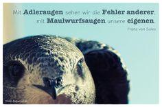 Mein Papa sagt...   Mit Adleraugen sehen wir die Fehler anderer, mit Maulwurfsaugen unsere eigenen.  Franz von Sales    Weisheiten und Zitate TÄGLICH NEU auf www.MeinPapasagt.de