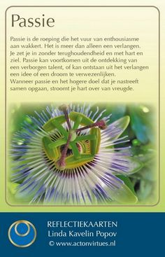 Psychology University, Learn Dutch, Social Business, Love Life Quotes, Hope Love, Spiritual Life, Way To Make Money, Reflection, Coaching
