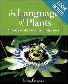 The Language of Plants: A Guide to the Doctrine of Signatures: Julia Graves: 9781584200987: Amazon.com: Books