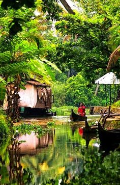 Kerala ~ India's tropical Malabar Coast. Its known for its palm lined beaches and backwaters, a network of canals popular for cruises.