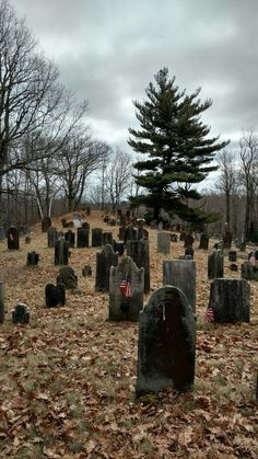 Scattered gravestones at an old graveyard built on a hill in Granville, Massachusetts.