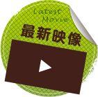 TVアニメ「ご注文はうさぎですか??」公式サイト