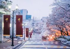 Picture yourself in Korea this Winter at Korea University! Places Around The World, Oh The Places You'll Go, Places To Visit, Around The Worlds, Cities In Korea, Korea University, City Vibe, Study Abroad, Countries Of The World