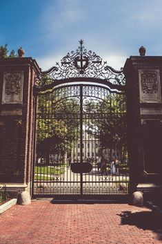 Besuchen Sie Harvard und das MIT in Boston: The Complete Guide - Esare Poyna Harvard Boston, Harvard Universität, Harvard Campus, Harvard Library, Harvard College, Usa University, Stanford University, College Aesthetic, Dream School