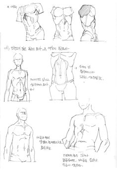 Body Reference Drawing, Human Figure Drawing, Human Reference, Body Drawing, Anatomy Reference, Art Reference, Man Anatomy, Human Body Anatomy, Anatomy Poses
