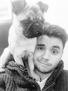 Hermoso sos Agus ♡ Pugs, My Friend, French Bulldog, Crushes, Queens, Celebrities, Music, People, Adidas