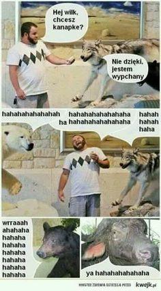 Very Funny Memes, Wtf Funny, Hahaha Hahaha, Polish Memes, Good Mood, Nice View, Wattpad, Humor, Movie Posters